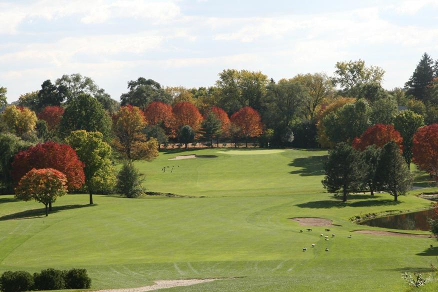 Golf Course 055